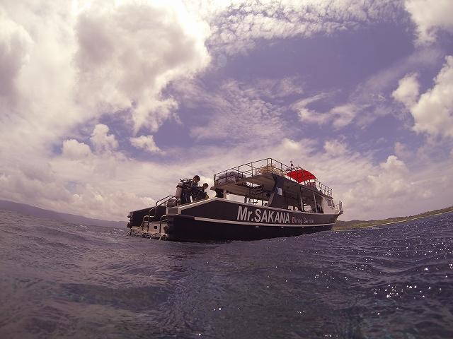 Mr.SAKANA Diving Service